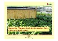 Kompakte Pflanzen durch Mechanischen Reiz - Ch fü di P i ...