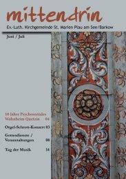 10 Jahre Psychosoziales Wohnheim Quetzin 04 Orgel-Schrott ...