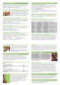 Musikschulflyer 2013 - Musikschule Frick - Seite 2