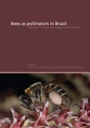 Bees as pollinators in Brazil - USP