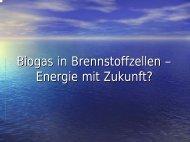 Biogas in Brennstoffzellen – Energie mit Zukunft? - Chemie