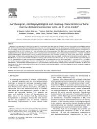 Morphological, electrophysiological and coupling characteristics of ...