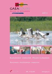 Katalog 2013 (7.2 MB) - GAEA tours
