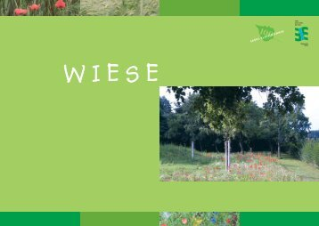 Wiese (pdf)