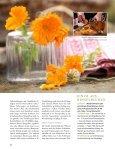 Grüne Hausapotheke - Kräuterladen Hollerblüte - Seite 5