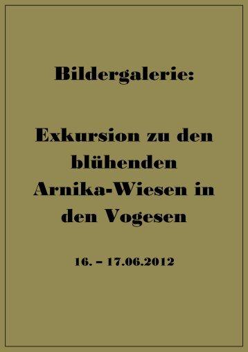 Bildergalerie: Exkursion zu den blühenden Arnika-Wiesen in den ...