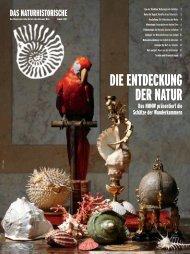 Sommer 2007 - Naturhistorisches Museum Wien