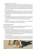 duplo - Professionalhoofcare.ch - Seite 4