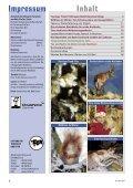 Heft 4/2011 - Pro Tier - Page 2