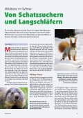Heft 4/2011 - Pro Tier - Page 7