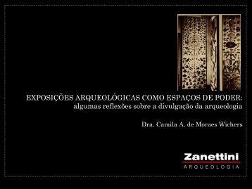 Camila A Moraes Wichers.pdf