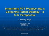 Integrating PCT Practice Into a Corporate Patent Strategy – a U.S. ...
