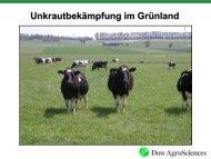 Unkrautbekämpfung im Grünland [Download,*.pdf, 3,35 MB