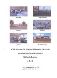 03 WfbM Wirtschaftsplan 2009.pdf - Hansestadt Stralsund