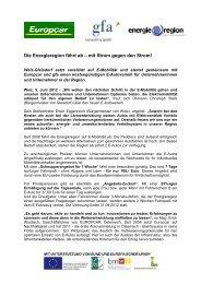E-Auto Verleihs - Gemeinde Ungerdorf
