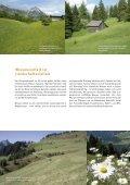 Wiesen im Biosphärenpark Großes Walsertal - Page 6
