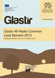 Glastir All-Wales Common Land Element 2013 - Union of Wales