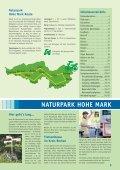 Download (PDF) - Stadt Borken - Seite 3