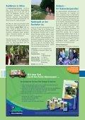 Download (PDF) - Stadt Borken - Seite 7