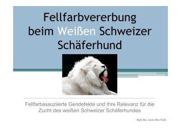 Fellfarbvererbung beim Weißen Schweizer Schäferhund - BVWS ...