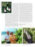 Hungerinseln« im Rhein - Schlossgut Diel - Seite 3