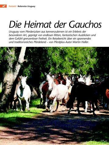 Die Heimat der Gauchos - Criollos