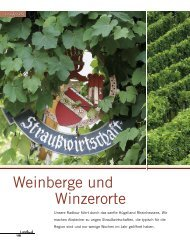 Weinberge und Winzerorte - Stefanie Jung