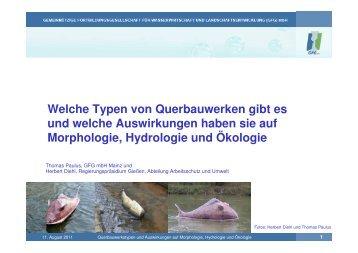Vortrag 1 Querbauwerke und Auswirkungen auf Morphologie ...