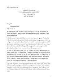 Die Predigt vom 14. 11. 2010 als PDF