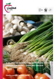 A-balance-of-healthy-and-sustainable-food-choices