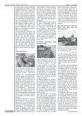 Sonnenplätze für Lauffener Mauereidechsen - Stadt Lauffen am ... - Seite 4