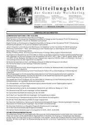 Ausgabe 8 Mittwoch, 12.04.2006 - Weichering