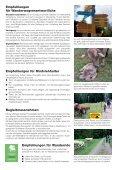 Rindvieh und Wanderwege» (3.7 MB) - Seite 2