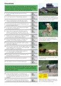 Rindvieh und Wanderwege» (3.7 MB) - Seite 3