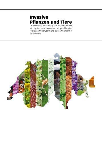 Invasive Pflanzen und Tiere - Uniaktuell - Universität Bern