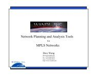 MPLS Networks Network Planning and Analysis Tools - WANDL