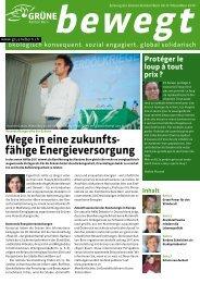 Wege in eine zukunfts- fähige Energieversorgung - Grüne Kanton ...