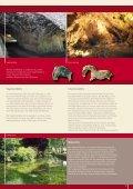 höhlenreich - Alb-Donau-Kreis Tourismus - Seite 7