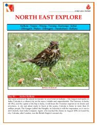 NORTH EAST EXPLORE - Tours to India