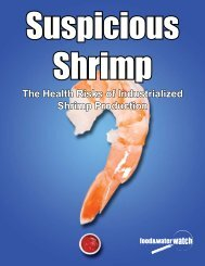 The Health Risks of Industrialized Shrimp Production - Food & Water ...