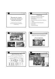 Ökonomische Aspekte nosokomialer Infektionen und ihrer Prävention