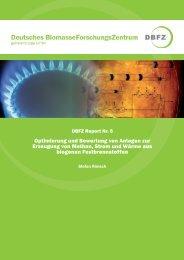 Optimierung und Bewertung von Anlagen zur Erzeugung von ...