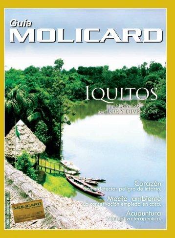 Iquitos - Municipalidad de la Molina