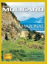 Amazonas - Municipalidad de la Molina