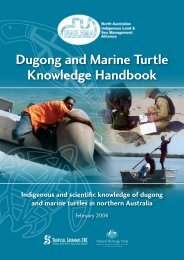 dugong and marine turtle management project - Seagrass-Watch