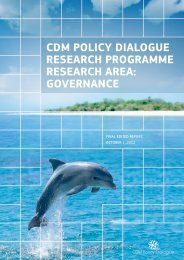 Governance - CDM Policy Dialogue