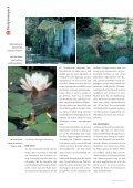 Kunst am Wasser - Skulpturen-Symposium - Page 3