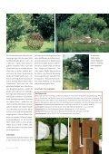 Kunst am Wasser - Skulpturen-Symposium - Page 4