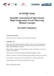 Executive Summary - Esa