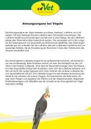 Atmungsorgane bei Vögeln - cdVet Naturprodukte GmbH